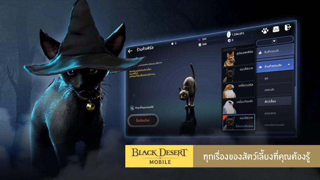 ระบบสัตว์เลี้ยง แลกเปลี่ยน skill ใน Black Desert